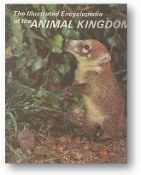 Illustrated Encyclopedia of the Animal Kingdom by Danbury, 1972